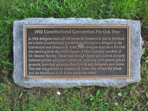 Constitution Convention Oak marker, Torrington